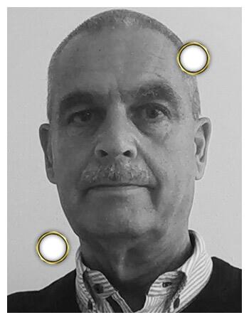 Paul Mulder - DaVinci Comite